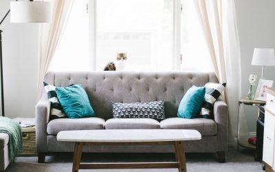 What Makes The Couch The Dirtiest Thing In Your Home