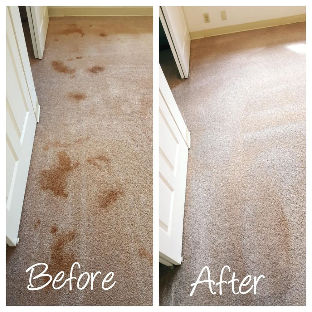 carpet cleaning pearl city, hawaii before and after